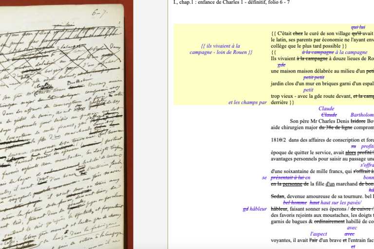Ramona Naddaff, a professor of rhetoric at UC Berkeley, is digging deeper into Madame Bovary Author Gustave Flaubert 's influences, self-censorship, editorial censorship and editing methods using data science tools.